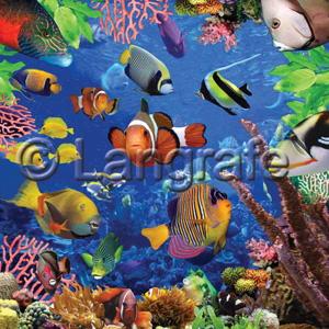 Unterwasserwelt der Fische